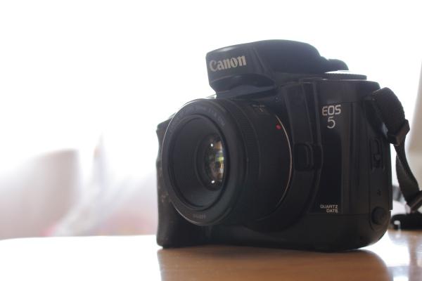 フィルムカメラEOS5の視線入力AFってどんな感じか試してみた